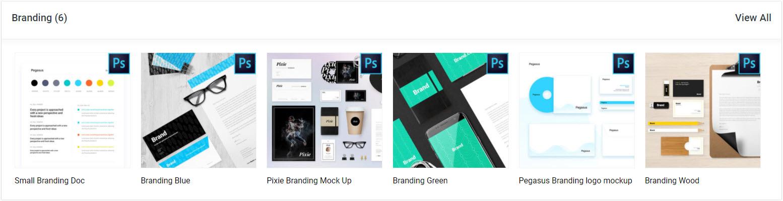 divi den pro branding docs asset library