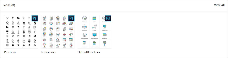 divi den pro custom icon sets asset library