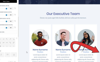 Screenshot showing how to customise the divi back to top button