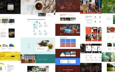 8 Divi Homepage Layouts by Divi Den Pro and Wp Den