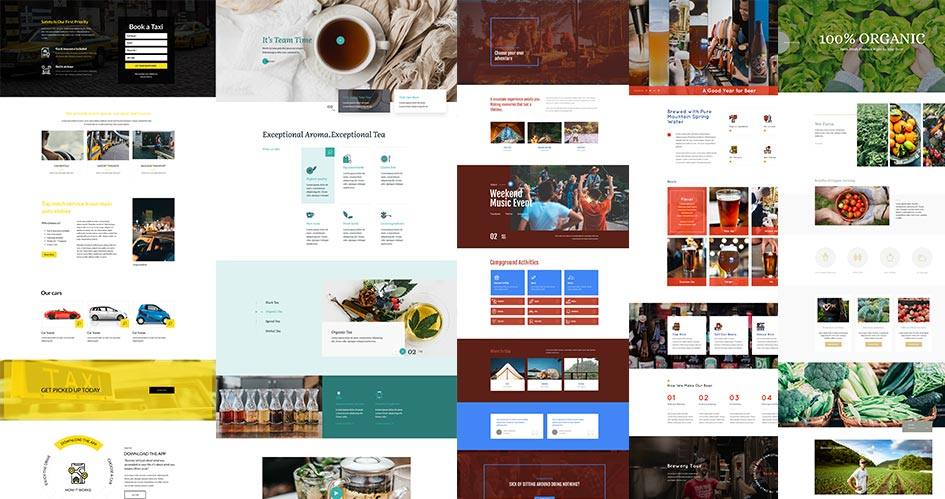 8 Divi Homepage Layouts Custom Made For These Niches