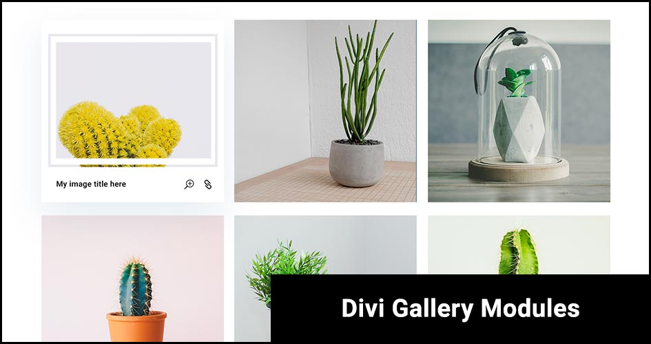7 Super Divi Gallery Modules To Blast-off 2020