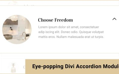 Eye Popping Divi Accordion Modules By Divi Den Pro